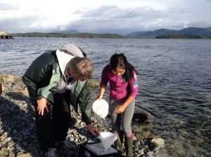 InFORMal Scientists, Vic Gladish and his student, collecting the November InFORM sample in Bella Bella on Friday the 13th.