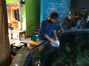 Andrew McCurdy of the Ucluelet Aquarium collects an InFORM sample from the main tank.