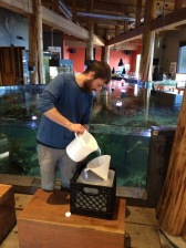 Andrew McCurdy of the Ucluelet Aquarium