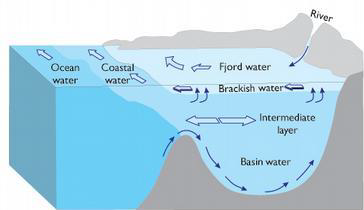 Typical fjord circulation with landward flowing salty ocean water at depth over a sill and ocean bound fresher water at the surface.