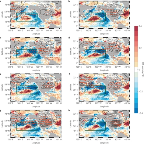 The development of the Pacific Extreme Pattern from 50 days (a) to 0 days (h) in 10 day increments. Contours indicate the height of 300 mb, an indicator of a warm air mass (ie. more contours closer together = hotter). (McKinnon et al. 2016)