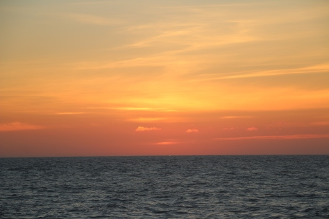 The Green Flash from Line P!!! (Look carefully in the center for the green dot. This only happens on very clear evenings where there is no haze on the horizon and is the last instant of the day when the sun shines through the surface ocean.) (Credit: Sara Zeidan)