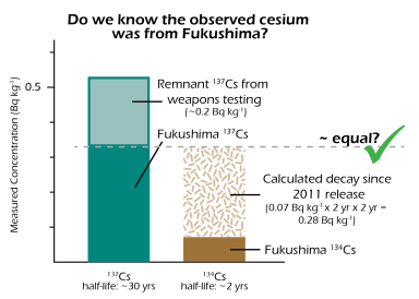salmon-2015-fukushima-check-01