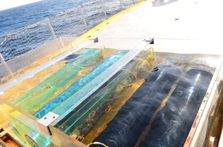 Phytoplankton incubation containers are used to evaluate algae growth rates without (L) and with (R) filtered light. Filters simulate growth at depth where less light penetrates.