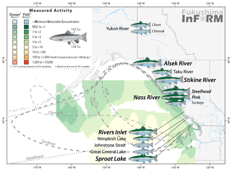 InFORM Salmon 2016 river - Sep17-01