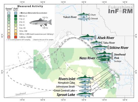 InFORM Salmon 2016 river - Sep17-01